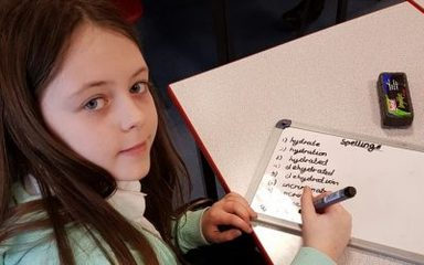 Serious spelling practice …