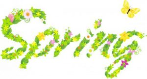 Spring Term Parental Consultations