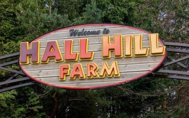 Nursery – Hall Hill Farm Trip