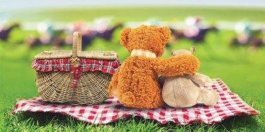 Summer Picnic Luncheon