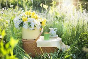 Outdoor Picnic Lunches & PTA Summer Fair